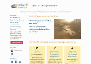 Intelligent Awakenings website