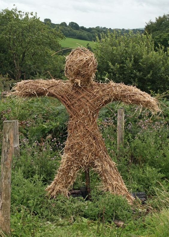 Image result for straw man